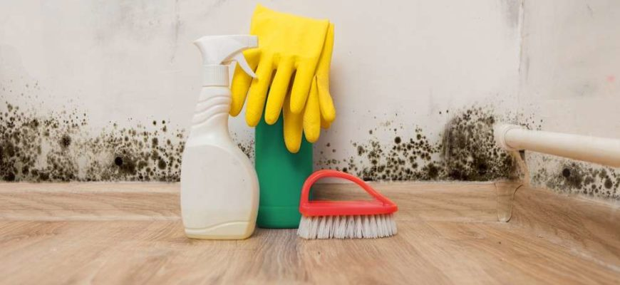 Are DIY methods safe when it comes to mold removal?